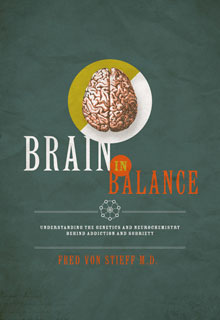 Brain In Balance book cover - this book explores advancements on addiction treatment and helps you understand the human brain function