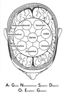 An illustration of neurotransmitters in the brain